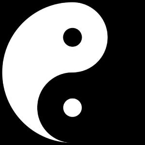 netwerkperspectief - yin yang